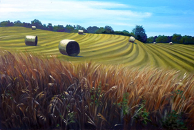 Hayrolls in the Sun by LaMont